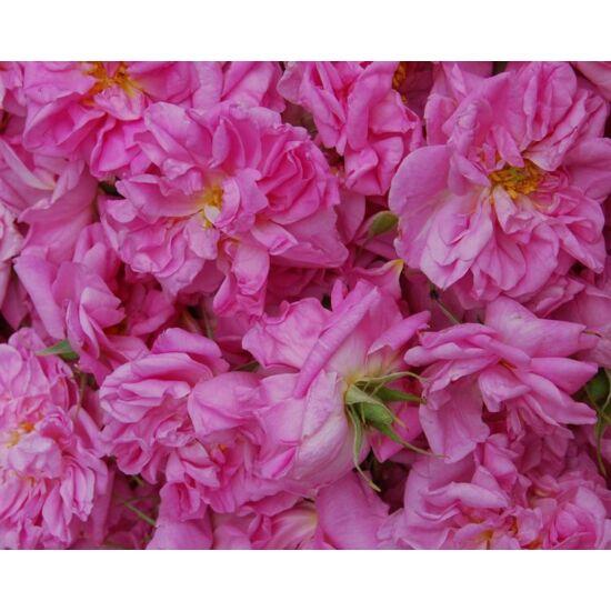 damaszkuszi-rozsa-jojoba-olajban